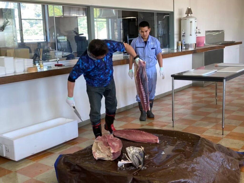 社員食堂でのマグロ解体ショー